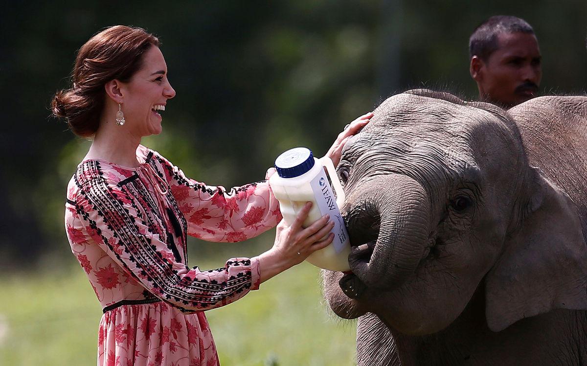 Lições de estilo de Kate Middleton na Índia e no Butão